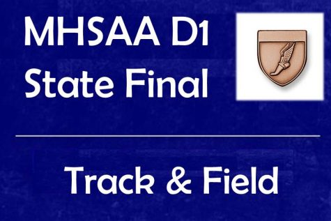Brother, sister duo compete at state track final