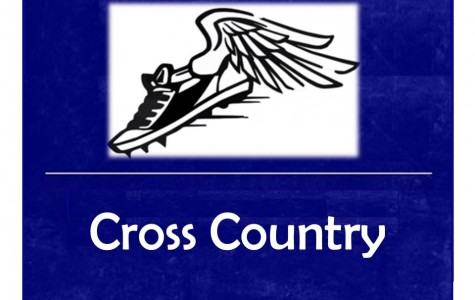 Braziel leads the Hornets in regional cross country