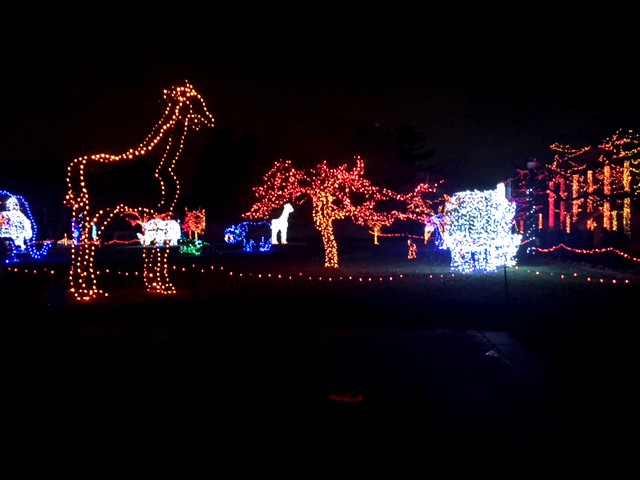 Detroit Zoo Christmas Lights.The Detroit Zoo S Wild Lights Brighten December The Eclipse