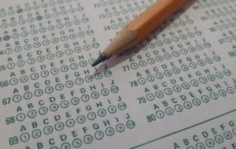 Eclipse staff to eviscerate exams, will publish again next week