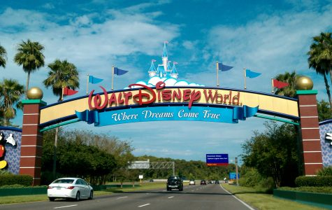 Disney World brings magic to its visitors