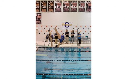 Raysin qualifies for regional diving competition