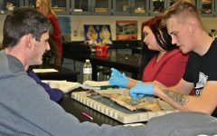 Zoology class dissects sharks