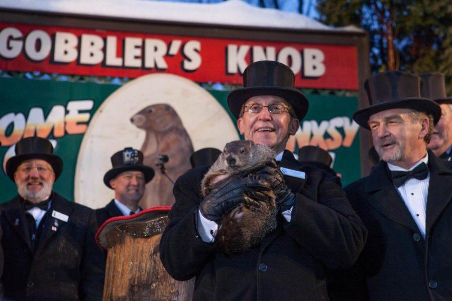 Punxsutawney Phil makes his annual prediction during the 2015 Groundhog Day celebration in Punxsutawney, Penn.