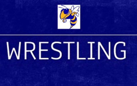 Regional competition ends the wrestling team's season