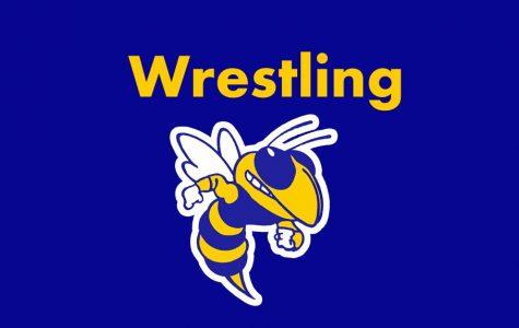 DiGenova, Ruhstorfer advance to wrestling state finals