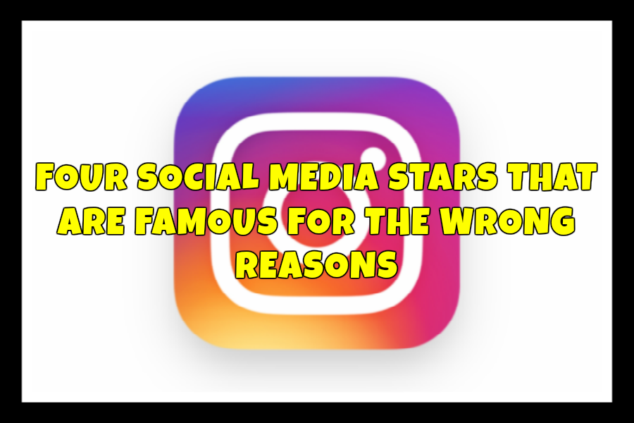 Four+social+media+stars+that+are+famous+for+the+wrong+reasons