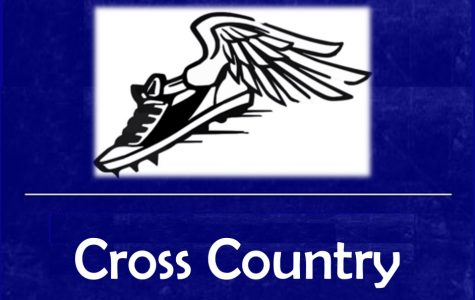 Braziel leads cross country, earns medal at Frankenmuth