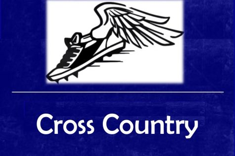 Braziel leads cross country team at regional