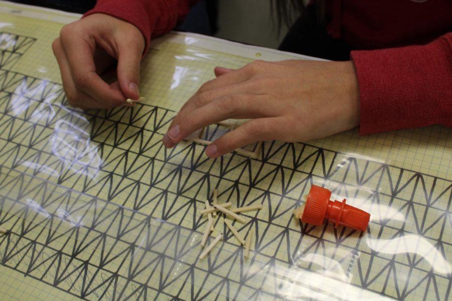 Bishoff glues matchsticks to blueprint for her bridge