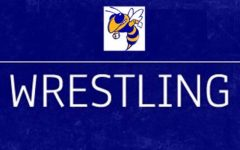 Wrestling team ends season at regional