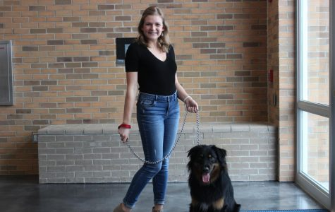 "No more ""ruff"" days: Seniors allowed to bring dogs to school"
