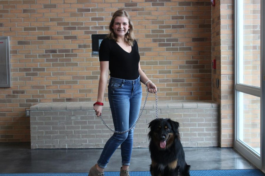 Senior+Mallory+Simms+plans+on+bringing+her+friend%27s+dog+to+school+on+May+15.