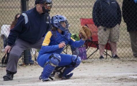 Softball sweeps Carman-Ainsworth