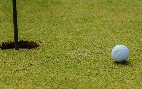 Golf takes eighth in Pre-Season Metro League Tournament