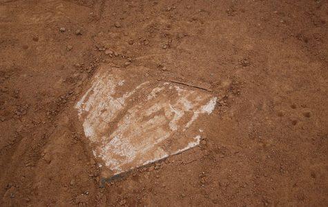 Baseball, softball take on Blue Devils in season openers