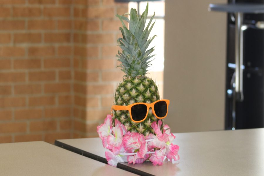 NHS+decorated+the+dance+with+Hawaiian-themed+decor+like+pineapples+with+leis+and+sunglasses.