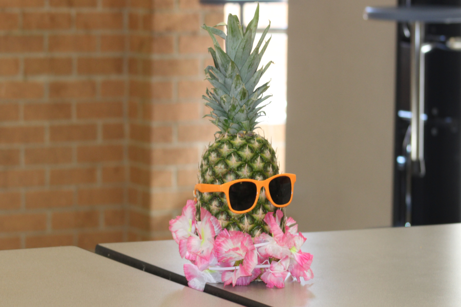NHS decorated the dance with Hawaiian-themed decor like pineapples with leis and sunglasses.