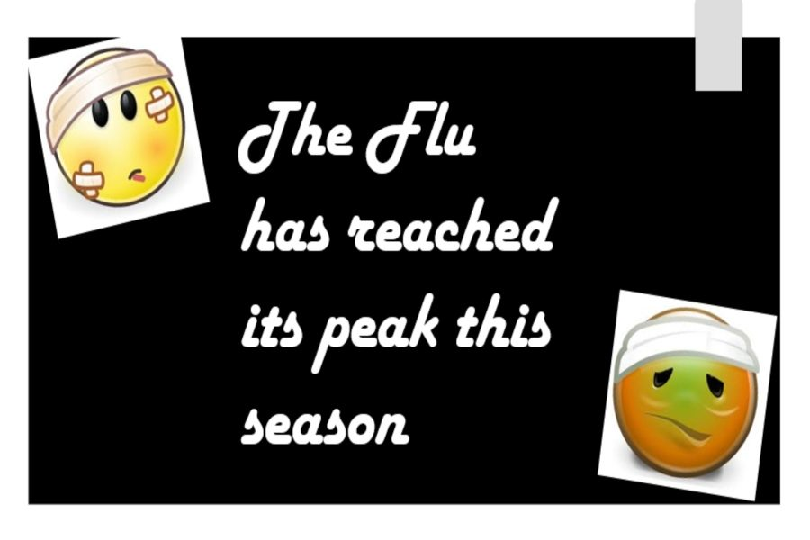 The+flu+has+reached+its+peak+this+2019+season.