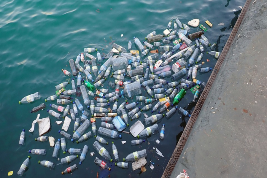 Plastic bottles and other trash collected in bodies of water shows the impact of garbage on the environment.