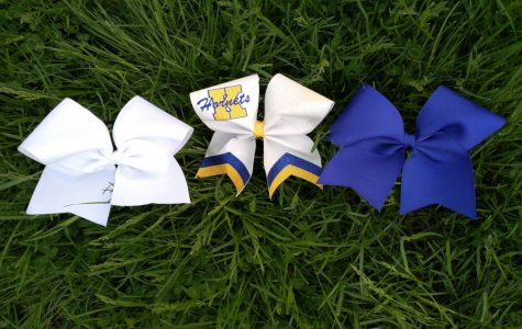 Cheer camp helps cheerleaders reflect, improve skills