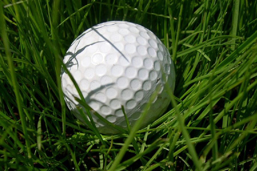 Golf placed seventh at the Metro League Post-Season Tournament, carding a 396.