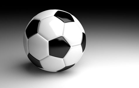 Soccer ties Owosso, falls to Imlay City