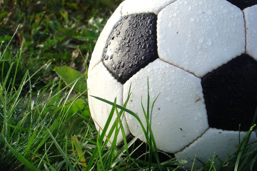 The soccer team lost 8-0 to Linden on Monday, April 29.