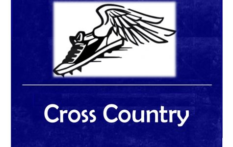 Cross country trips up at second Metro League jamboree