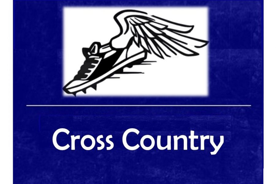 Cross country placed 11th in the second Metro League jamboree.