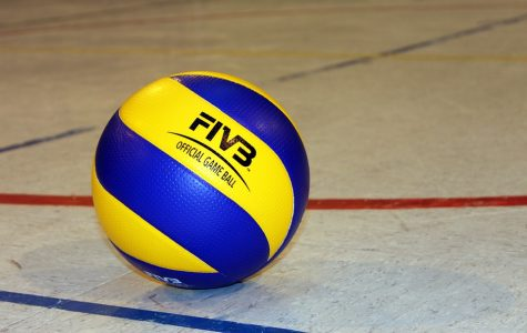 Volleyball clawed by Eagles
