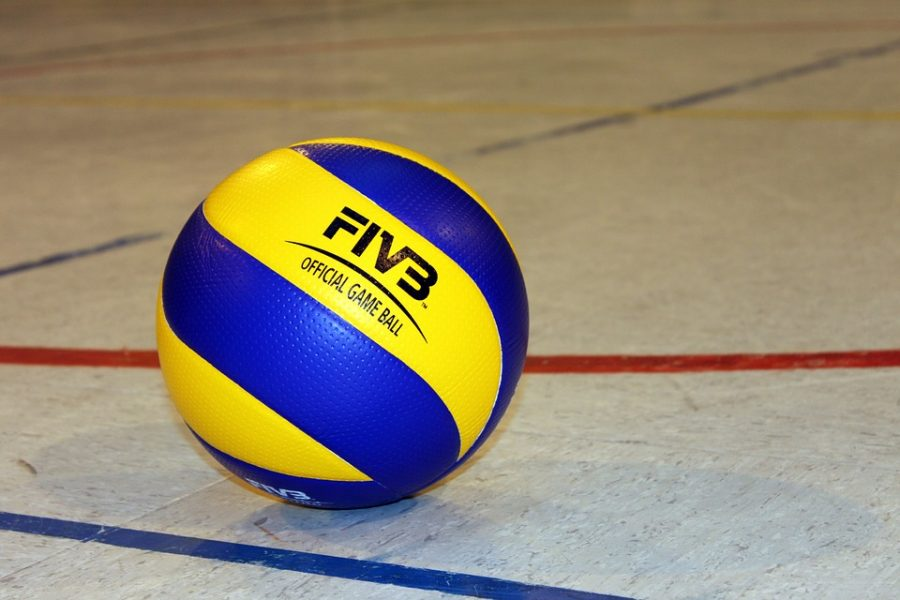 Volleyball+fell+to+Linden+3-0+on+Wednesday%2C+Sept.+25.