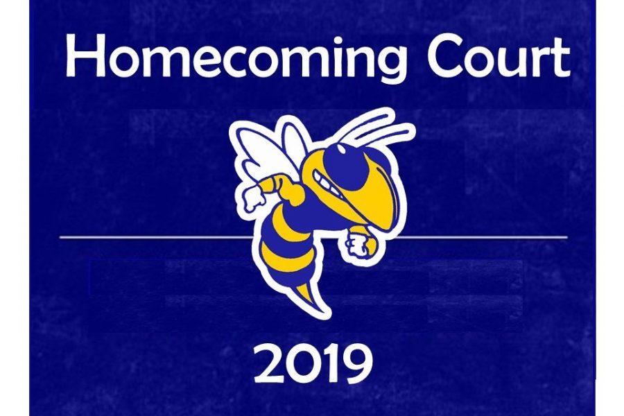Twelve students will make up the 2019 homecoming court.