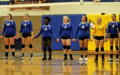 Volleyball buzzes over Falcons, clawed by Tigers