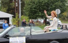 Davis named grand marshal