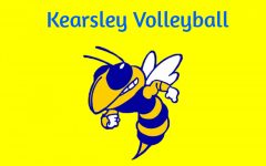 Volleyball falls to Lake Fenton
