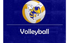 Raiders end volleyball season