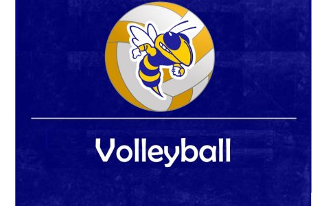 Raiders end volleyball season