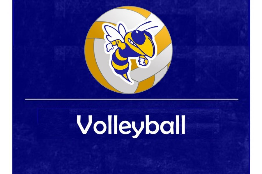 The volleyball team ended its season with a loss to Flushing Monday, Nov. 4, in an MHSAA Division 3 district match.