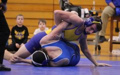 Wrestling falls to Tigers, Blackhawks