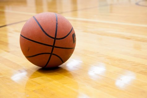 Girls basketball stings Trojans