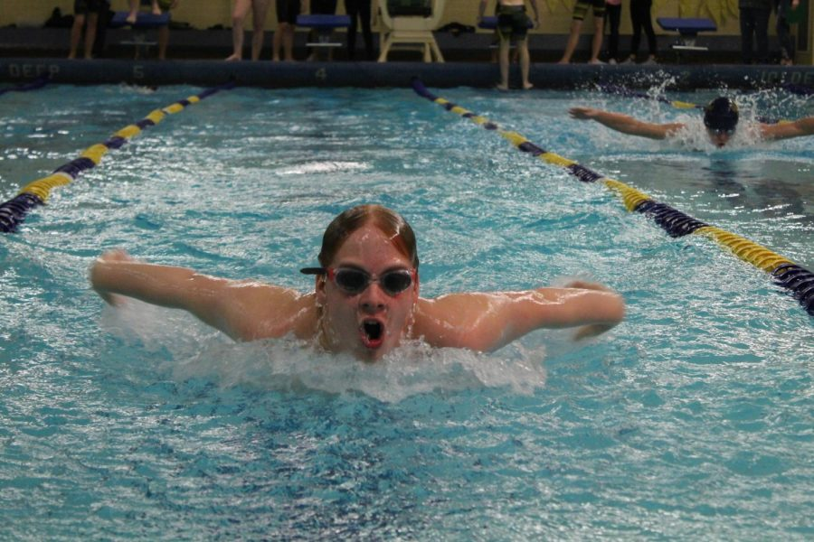 Sophomore Brodie Dustin swims the 50-meter butterfly against Owosso in the 200 medley relay.