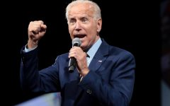 Biden wins Michigan democratic primary