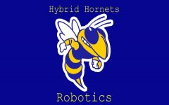 Hybrid Hornets stung in Kettering competition