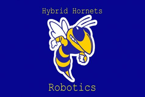 The Hybrid Hornets stung at Kettering competition