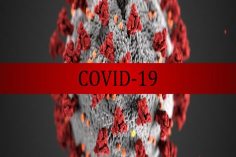 COVID-19 is a story for the grandchildren
