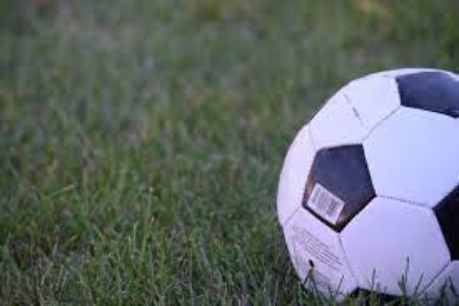Boys soccer falls to Clio in District finals